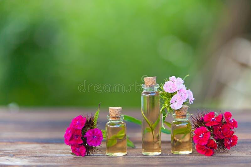 Essence des fleurs sur la table dans le beau pot en verre photos stock