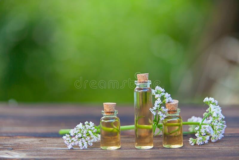 Essence des fleurs sur la table dans le beau pot en verre image stock