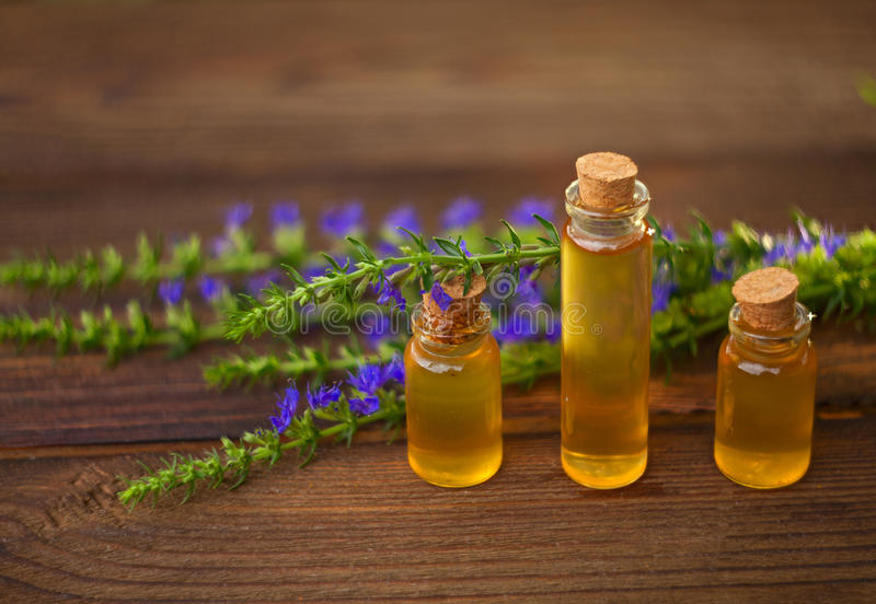 Essence of lavender flowers on table in beautiful glass Bottle stock photo