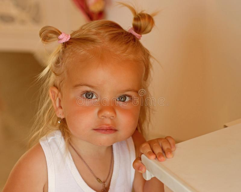 Essendo un cutie reale Piccola ragazza con le code di cavallo del panino Acconciatura divertente di piccola usura del bambino Bam fotografie stock