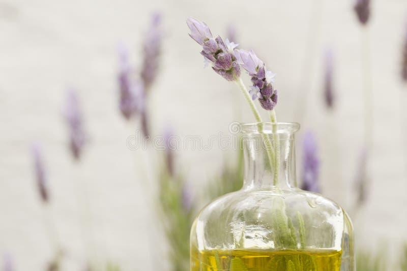 Essentiële olie en lavendelbloemen stock afbeelding