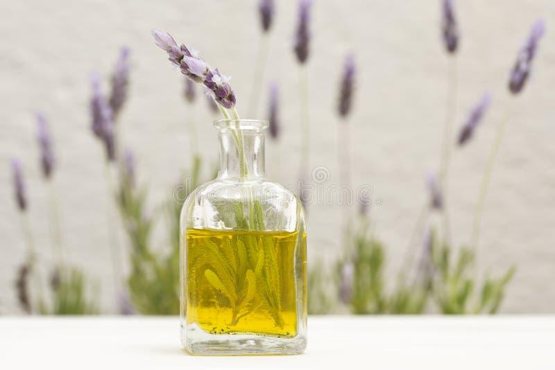 Essentiële olie en lavendelbloemen stock fotografie