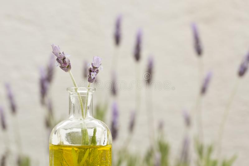 Essentiële olie en lavendelbloemen royalty-vrije stock foto's
