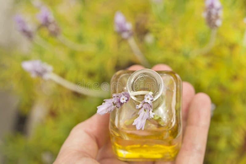 Essentiële olie en lavendelbloemen stock foto's