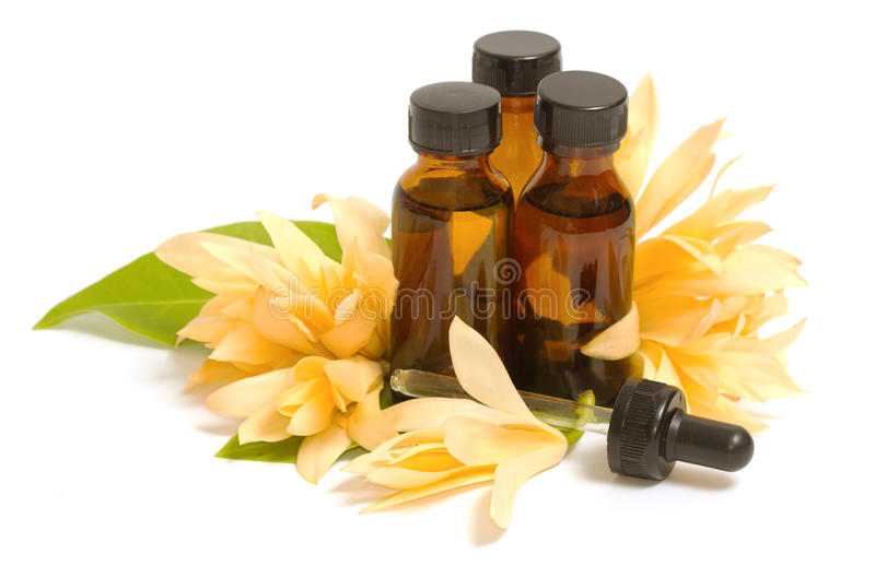 Essential aroma oil with champaka flower. Isolate royalty free stock images