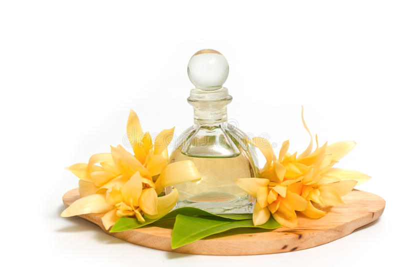 Essential aroma oil with champaka flower. Isolate stock photos