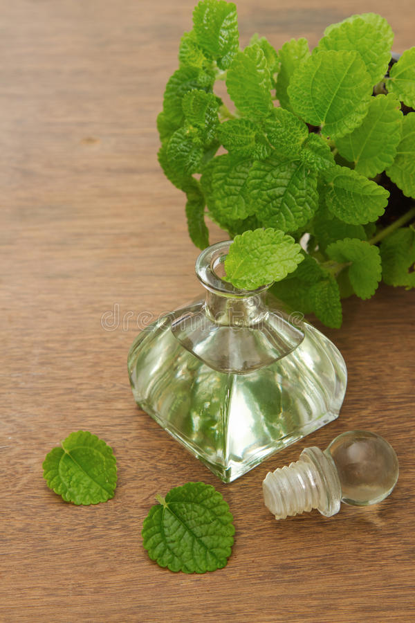 Essential aroma peppermint oil and fresh mint stock photography