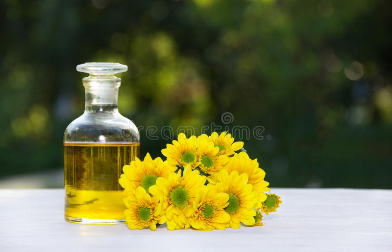 Essential floral oil. Flower elixir and fresh summer flowers. Spa and beauty care. stock photos