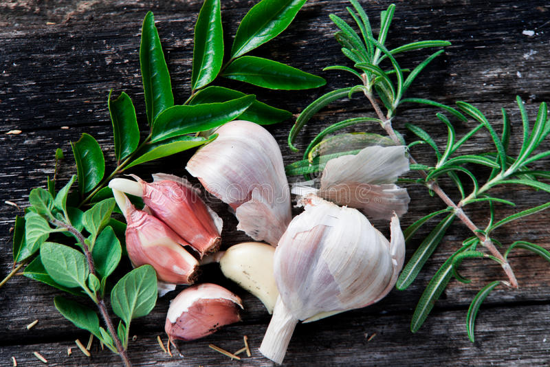the essential herbs stock image