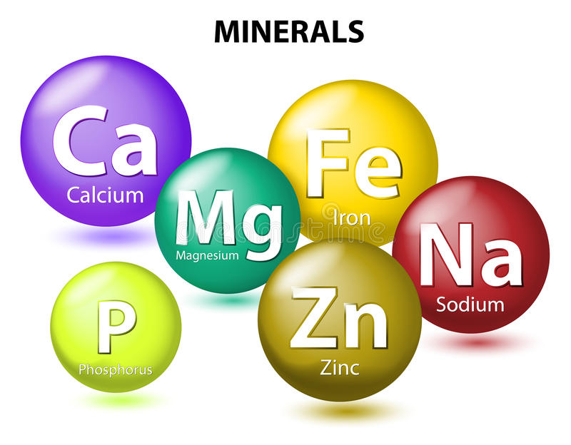 Essential Minerals. Essential chemical minerals or Dietary element. mineral nutrients. minerals and trace minerals are inorganic elements. Human body needs them stock illustration