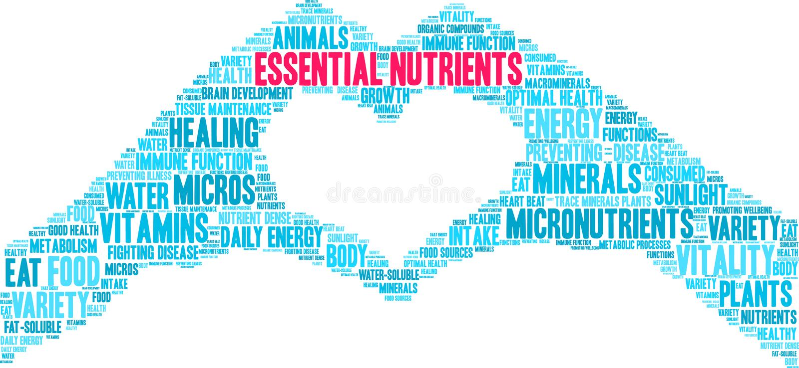 Essential Nutrients Word Cloud. On a white background stock illustration