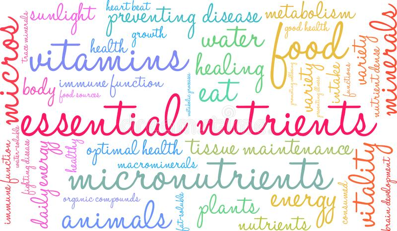 Essential Nutrients Word Cloud. On a white background royalty free illustration
