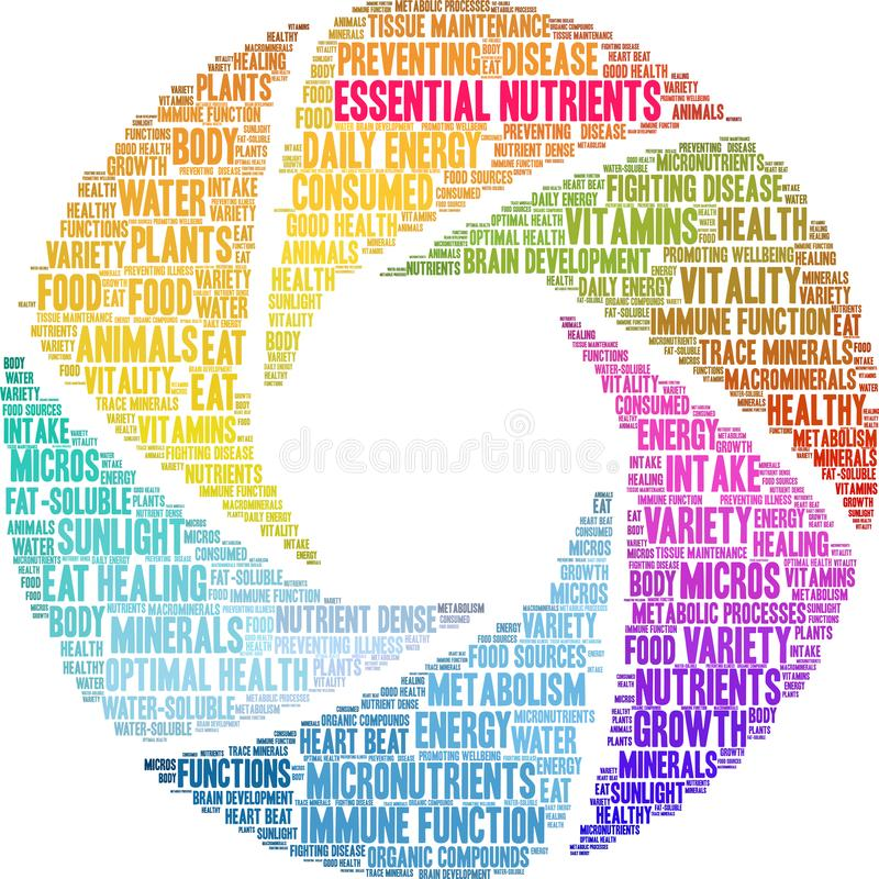 Essential Nutrients Word Cloud. On a white background vector illustration