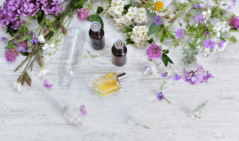 Essential oil bottles and freshness  flowers royalty free stock image