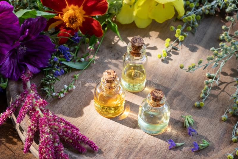 Essential oil bottles with hyssop, wormwood and other herbs stock image