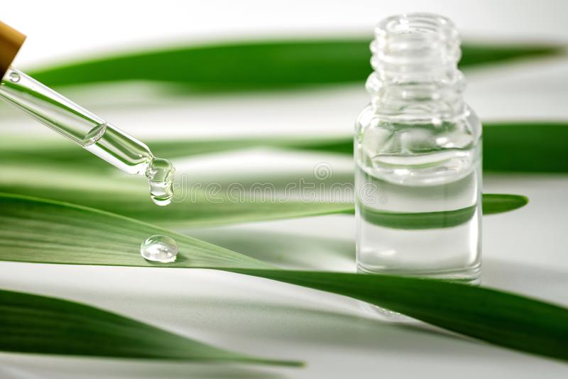 Essential oil drop falling on green leaf from dropper stock photo