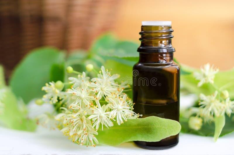 Essential oil of linden stock photos