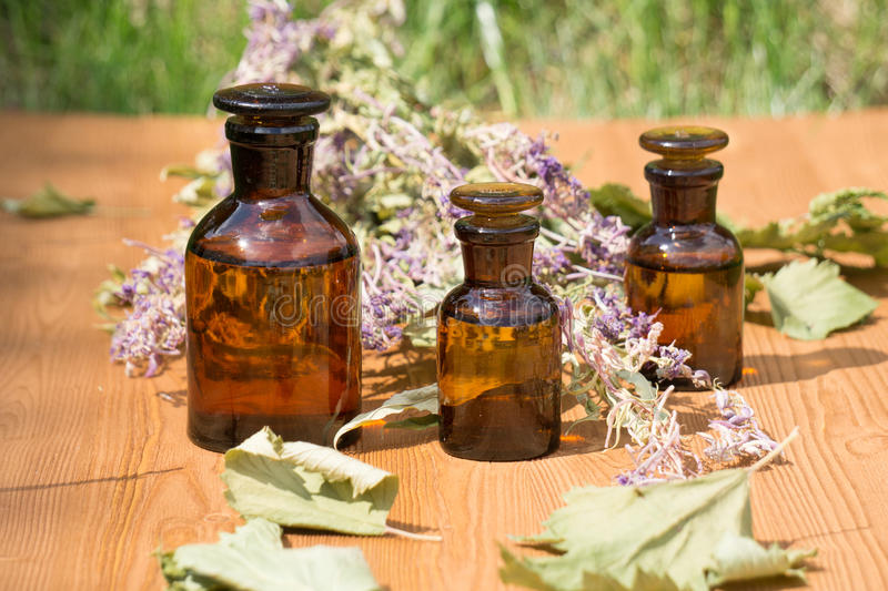 Essential oil in little bottle and medical flowers. Herbs on wooden board stock images
