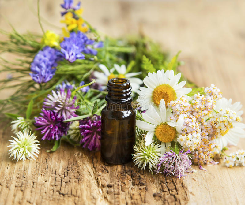 Essential Oil with Medicinal Herbs and Flowers for Alternative T stock image