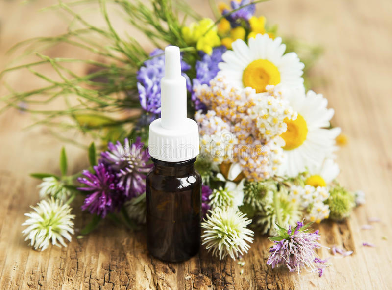 Essential Oil with Medicinal Herbs and Flowers for Alternative T royalty free stock images