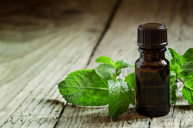 Essential oil of peppermint in a small brown bottle with fresh g royalty free stock images
