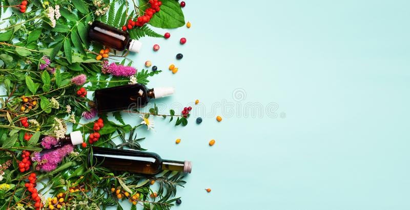 Essential oils in dark glass bottles and healing flowers, herbs on blue background. Holistic medicine approach. Healthy food royalty free stock photo