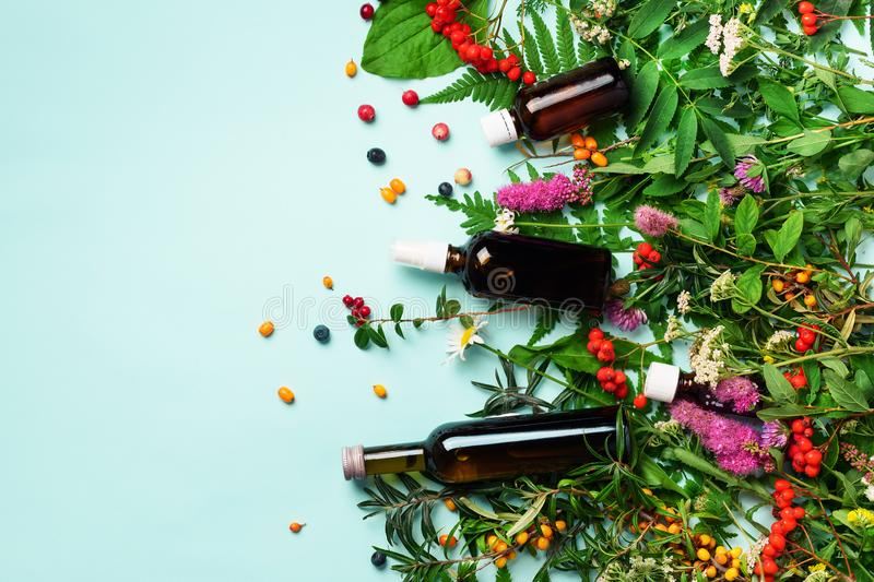 Essential oils in dark glass bottles and healing flowers, herbs on blue background. Holistic medicine approach. Healthy food royalty free stock photos