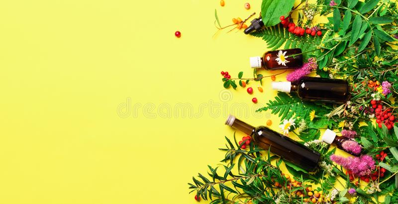 Essential oils in dark glass bottles and healing flowers, herbs on yellow background. Holistic medicine approach. Healthy food stock images