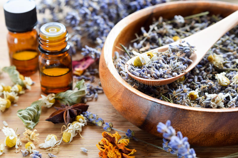 Essential oils with dried herbs stock photography