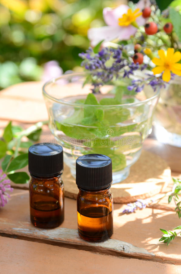 Essential oils with herbal drink and flowers. In garden stock image
