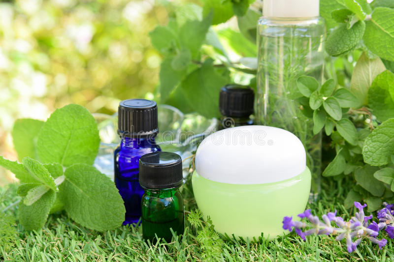 Essential oils and natural cosmetics. With green herbs royalty free stock photos