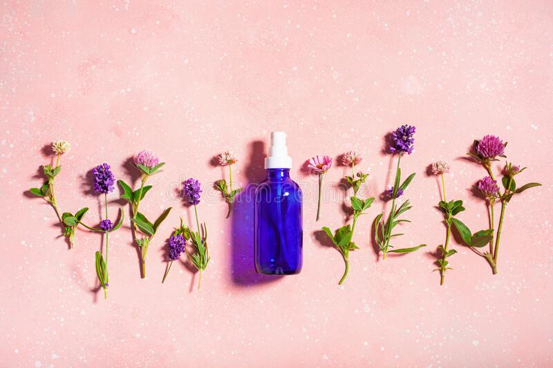 Essential oils, summer wild medical flowers and herbs. alternative medicine royalty free stock photos