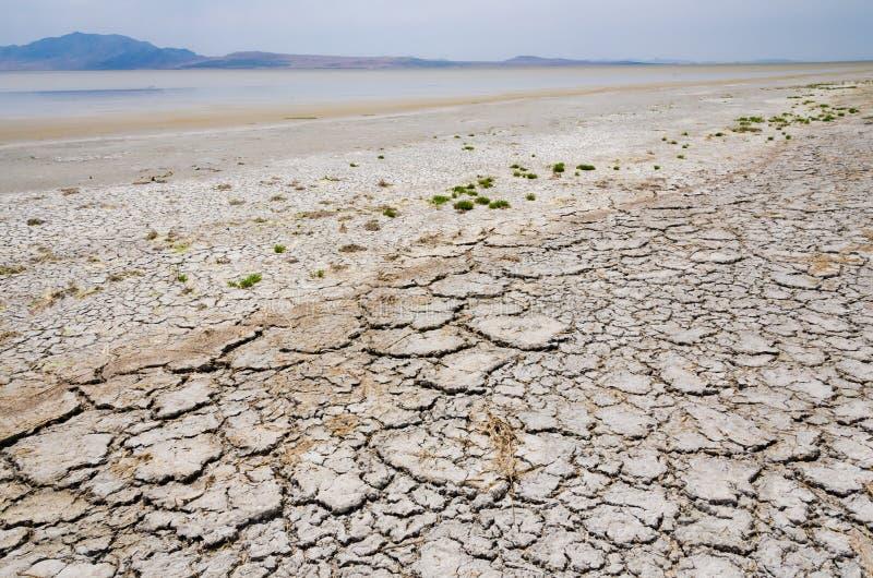 Essiccamento del Gran Lago Salato fotografia stock