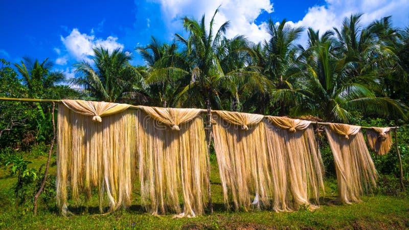 Essiccazione della canapa di Manila su Palo di bambù fotografie stock libere da diritti