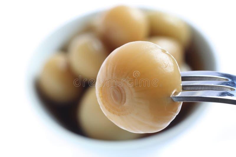 In Essig eingelegte Zwiebel auf einer Gabel stockfotografie