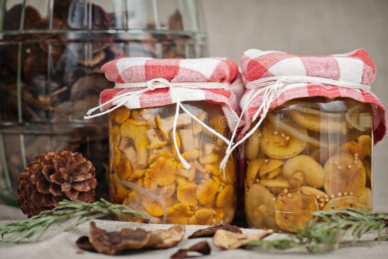 In Essig eingelegter Pilz lizenzfreies stockfoto