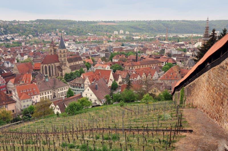 Esslingen全景  免版税图库摄影