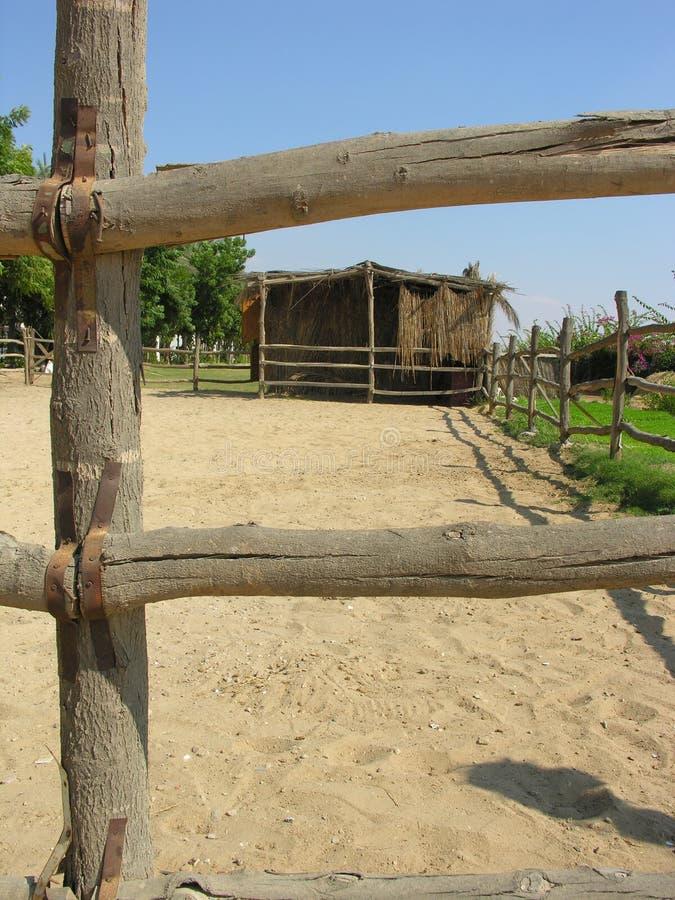Estábulo do cavalo fotos de stock