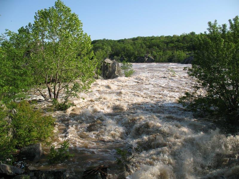 Estágio da inundação fotos de stock