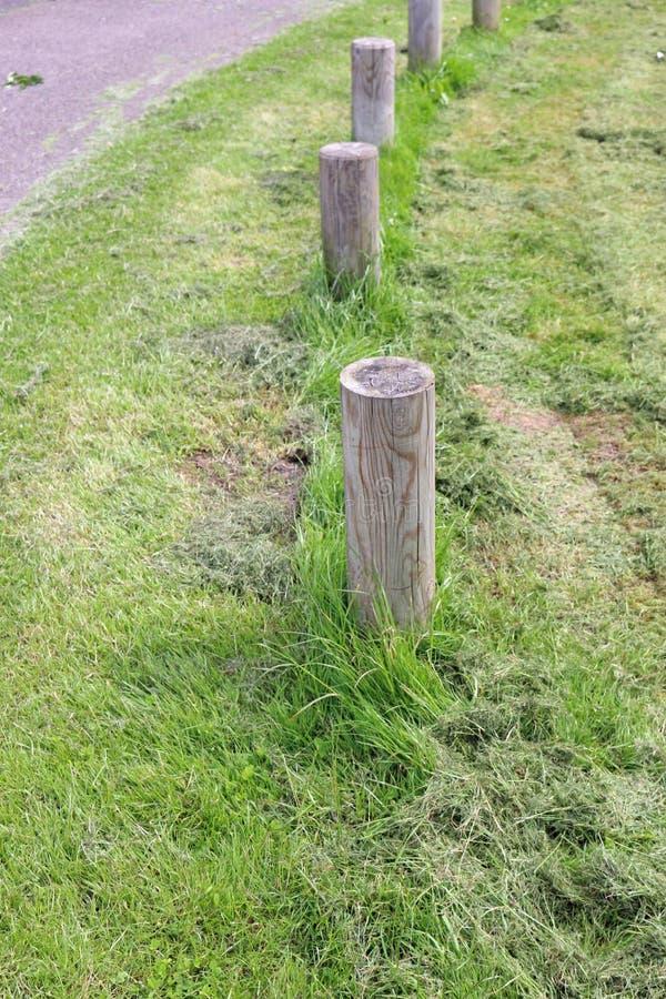 Estándar pobre del corte de la hierba alrededor de los posts fotos de archivo