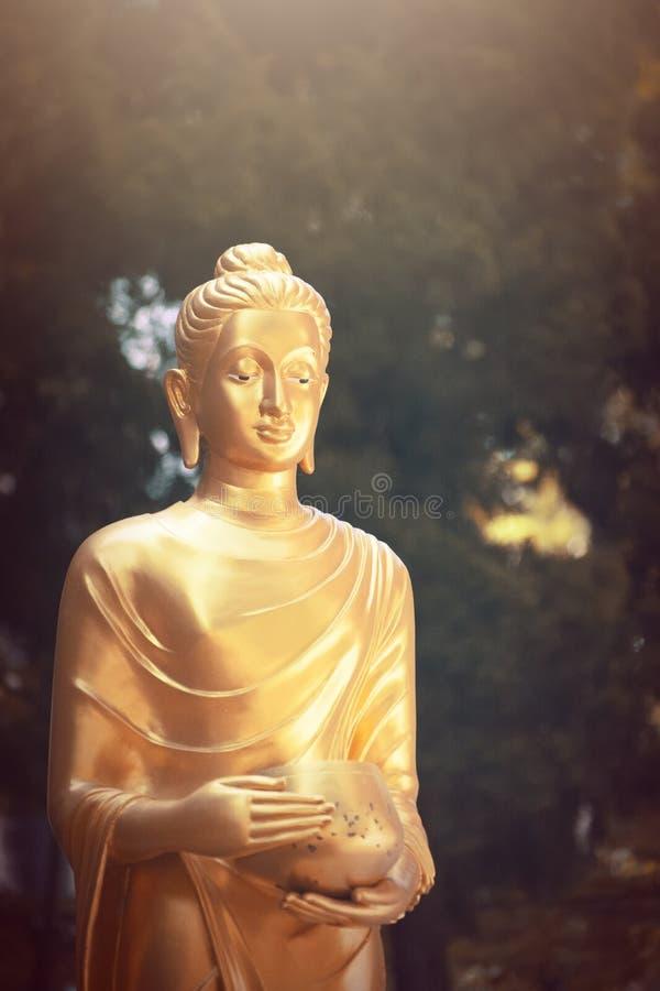 Estátua da Buda do ouro no templo de Tailândia imagens de stock