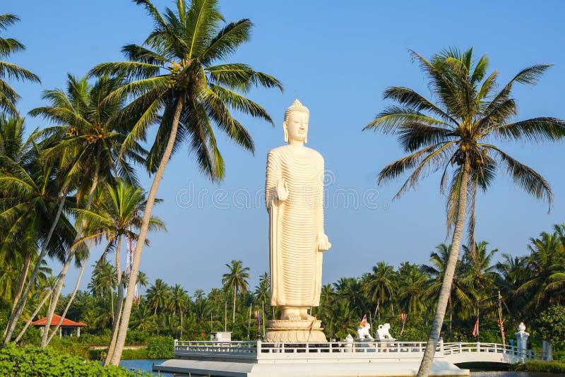Estátua da Buda no viharaya do honganji do tsunami imagens de stock