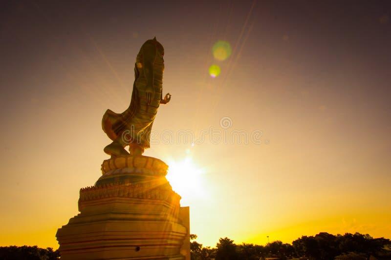 Estátua de Buddha - Tailândia fotos de stock