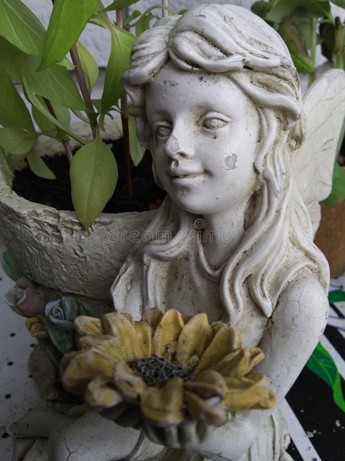 Estátua de Pixie com basil foto de stock