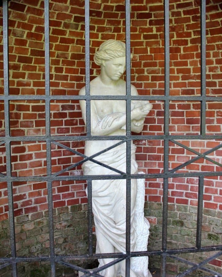 Estátua de uma moça atrás das barras em um fundo da parede de tijolo imagem de stock