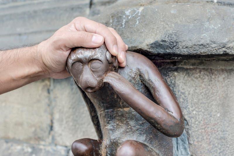 """Résultat de recherche d'images pour """"singe de mons"""""""