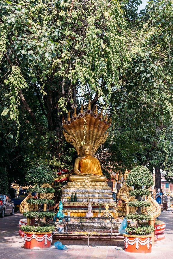 Estátua dourada da Buda do Naga no templo de Laos em Vientiane, Laos imagem de stock