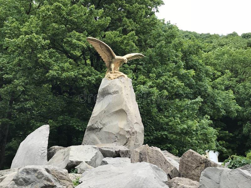 Estátua dourada de uma águia em Zheleznovodsk, Rússia fotos de stock