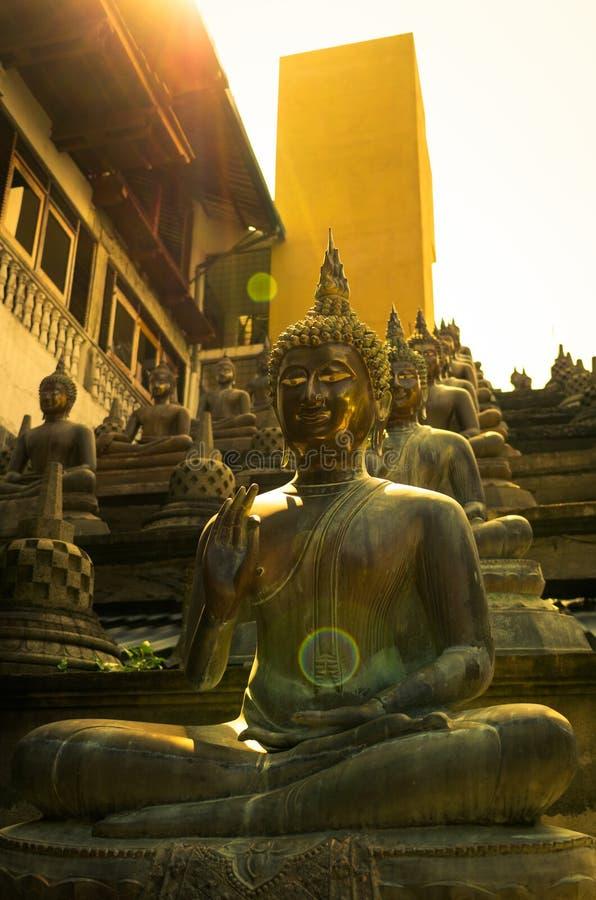 Estátuas da Buda em luzes do por do sol fotos de stock