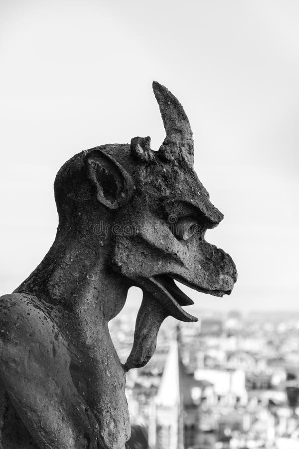 Estátuas da gárgula nas paredes de Notre Dame Cathedral em Paris imagem de stock royalty free